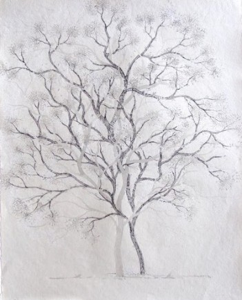 Title: 'Untitled' | Size: - 76cm X 55cm| Medium: Ink on Paper
